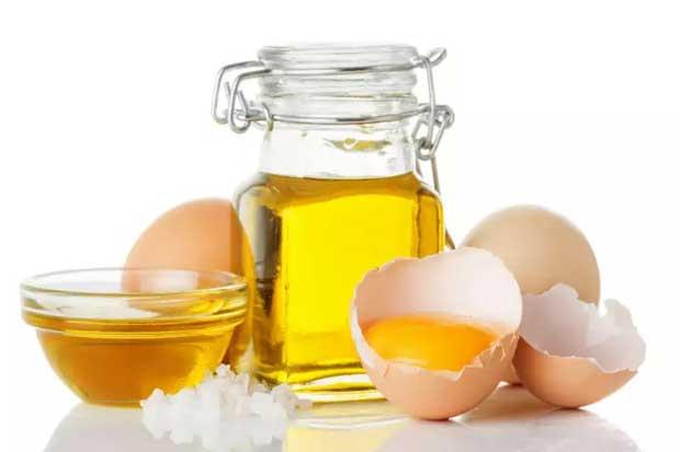 Masker Minyak Kelapa, Minyak Zaitun dan Telur